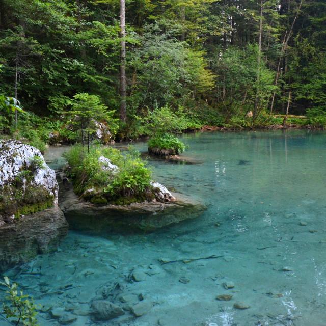 """Kamniska Bistrica River"" stock image"