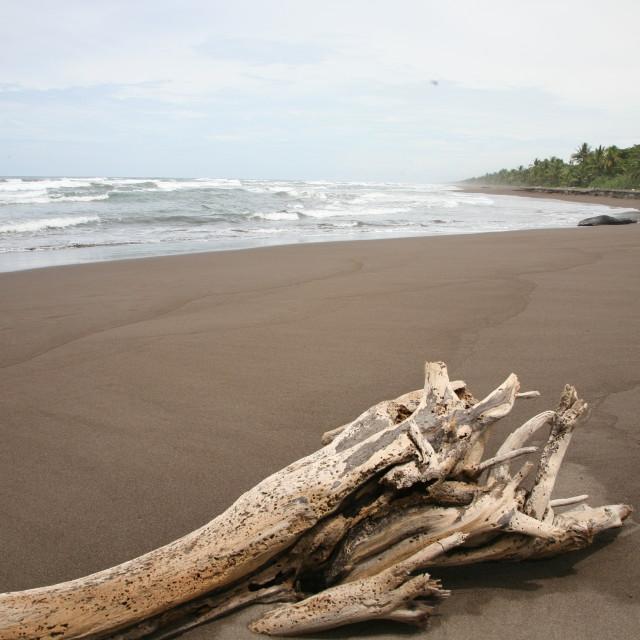 """Mar Caribe"" stock image"
