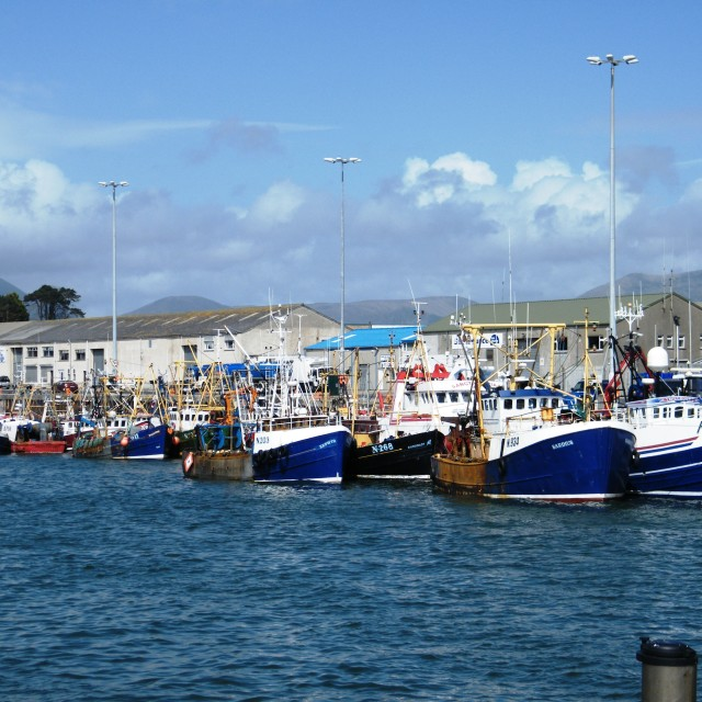 """Kilkeel Harbour"" stock image"