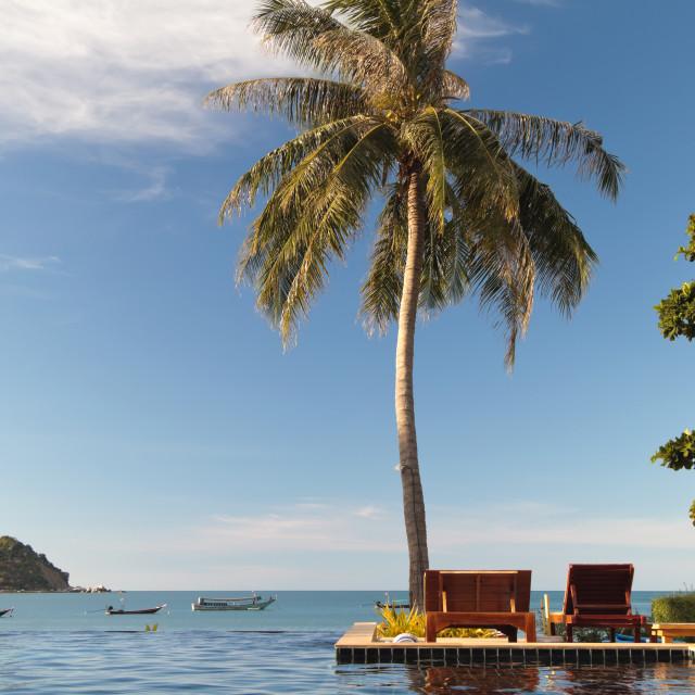 """Swimming pool facing the the sea"" stock image"