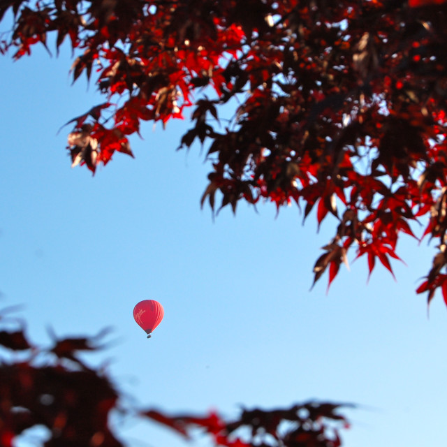 """""""Red Balloon Glimpse"""" stock image"""