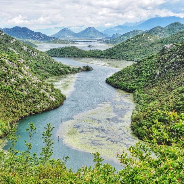 """Lake Skadar National Park 1"" stock image"