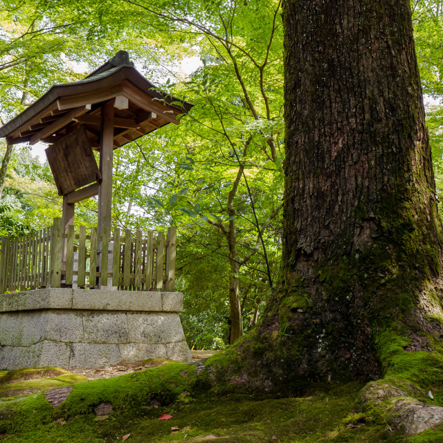"""Japanese well"" stock image"