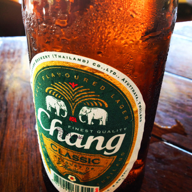 """Ice Cold Chang"" stock image"