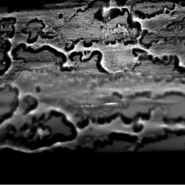 """Rain texture"" stock image"