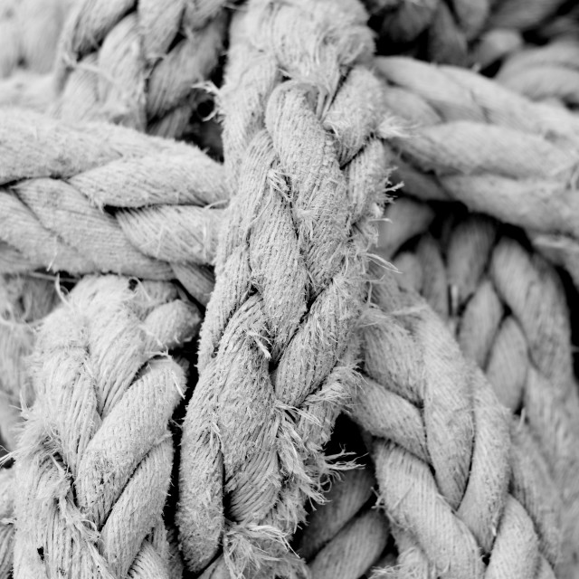 """Old Rope"" stock image"
