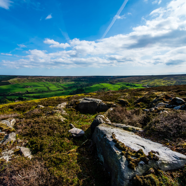 """North Yorkshire Moor (wide)"" stock image"