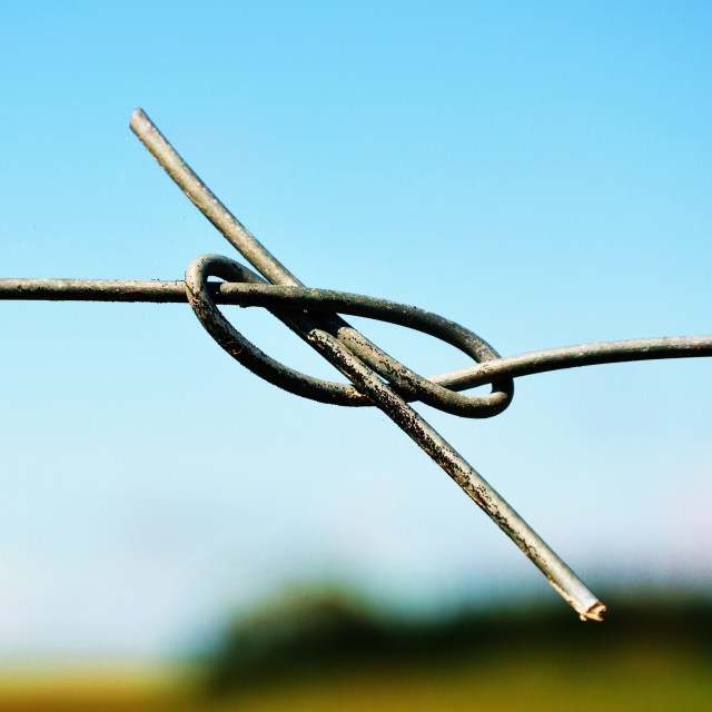"""Figure 8 Knot"" stock image"