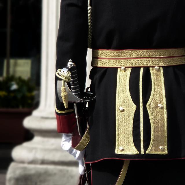 """""""Irish Army Ceremonial Dress with Sword"""" stock image"""