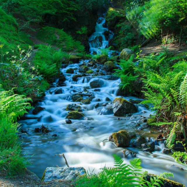 """Dartmoor Waterfall"" stock image"