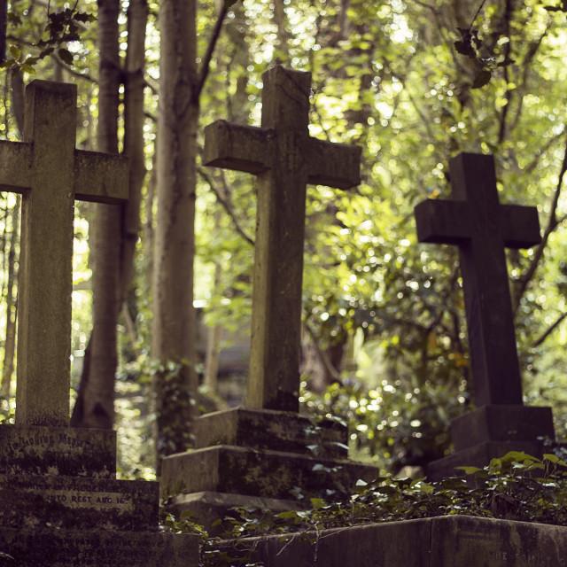 """Highgate Cemetery 1"" stock image"