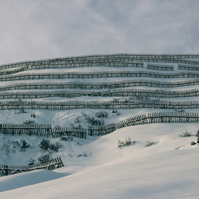 """Avalanche barrier"" stock image"