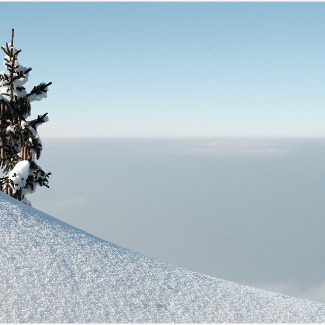 """""""Standing tall above the clouds"""" stock image"""