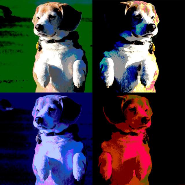 """Ode to Warhol"" stock image"