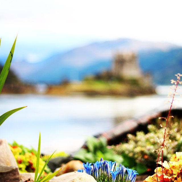 """""""Castle beyond the flowers"""" stock image"""