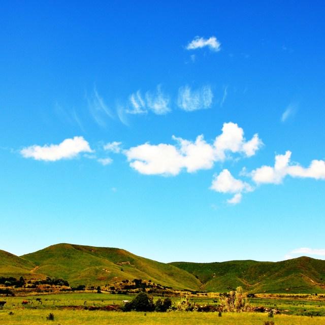 """Wairarapa Farm Land"" stock image"
