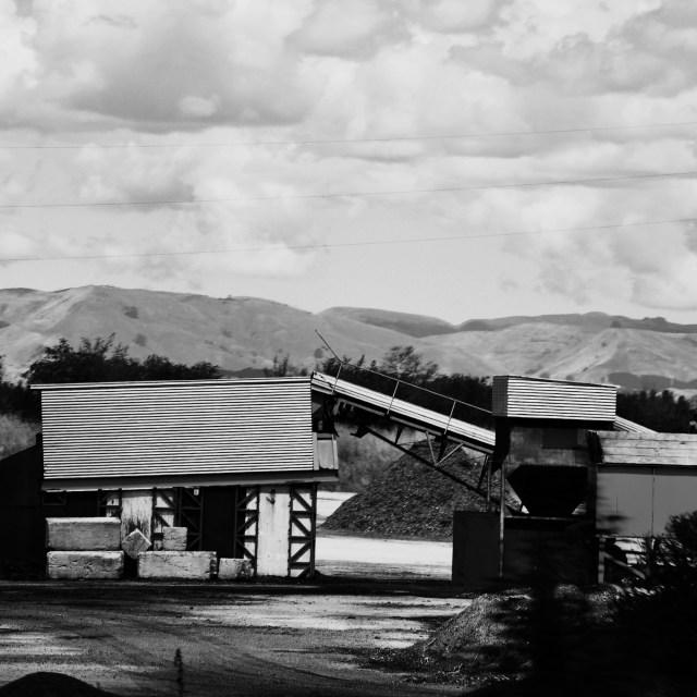 """River Shingle Plant"" stock image"