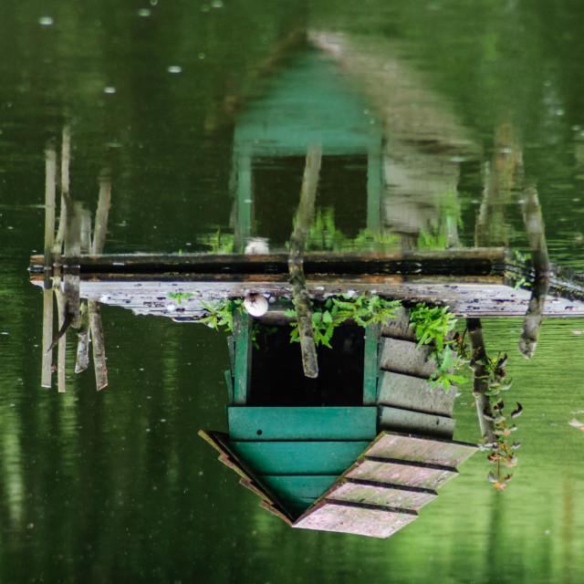"""Lake house"" stock image"