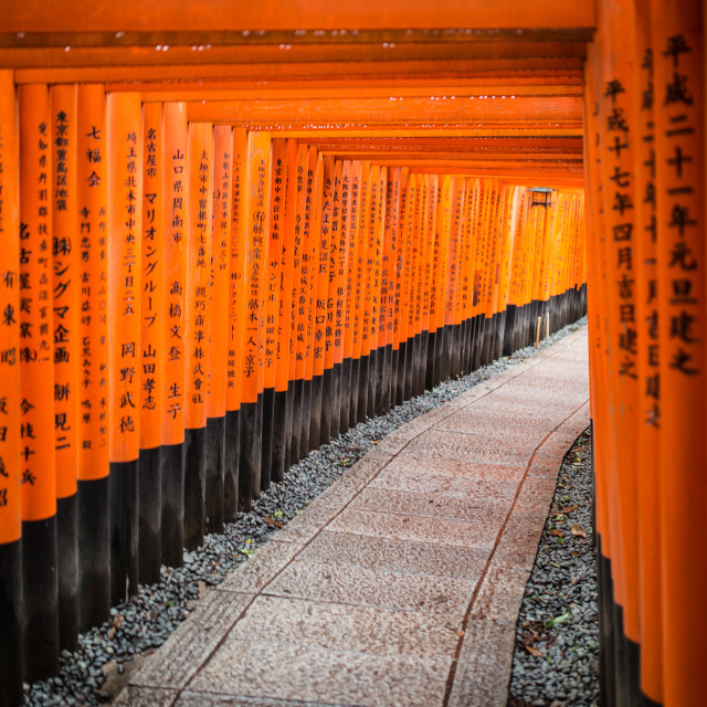 """Fushimi Inari-taisha, Kyoto"" stock image"