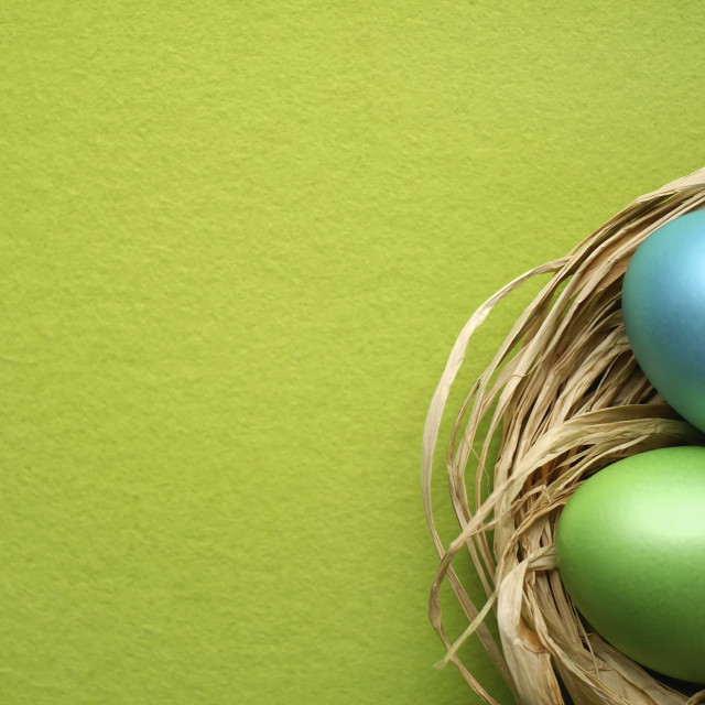 """Easter eggs blue green with copy space"" stock image"