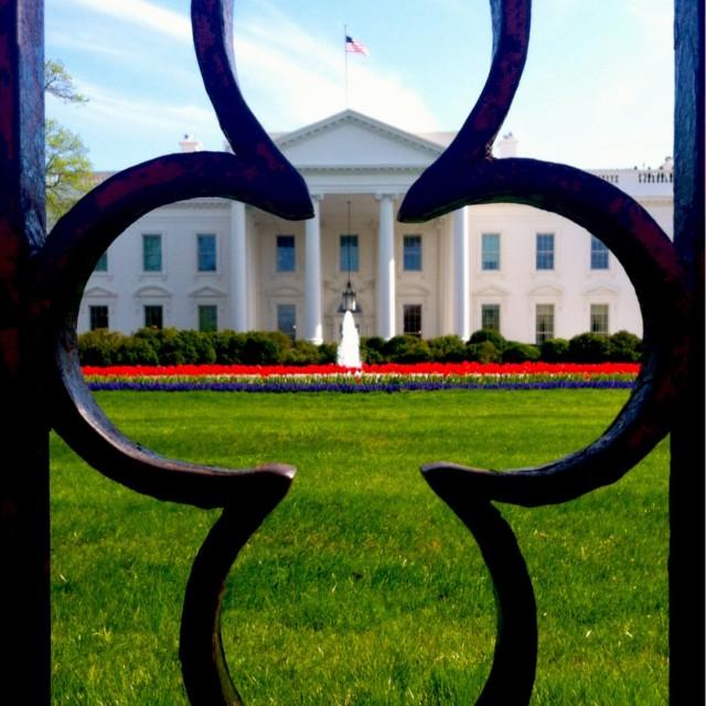 """White House"" stock image"