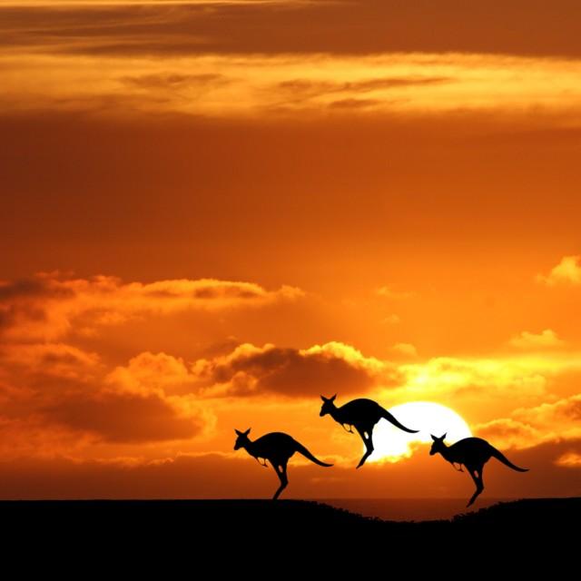 """""""Australia"""" stock image"""