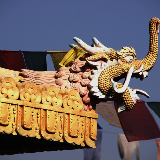 """""""Dragon on the temple roof"""" stock image"""