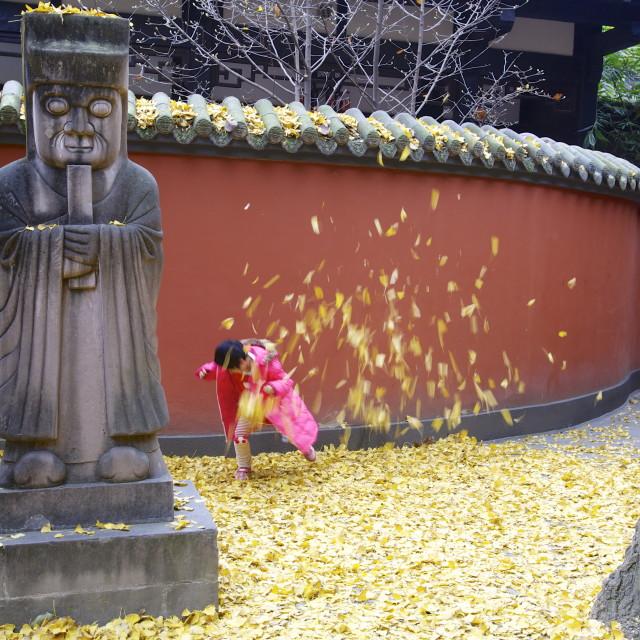 """Wuhou Temple, Chengdu"" stock image"