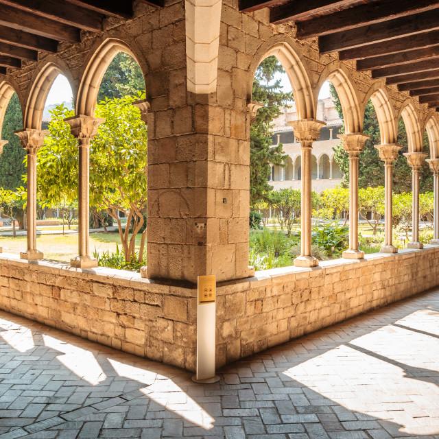 """""""Pedralbes Monastery"""" stock image"""