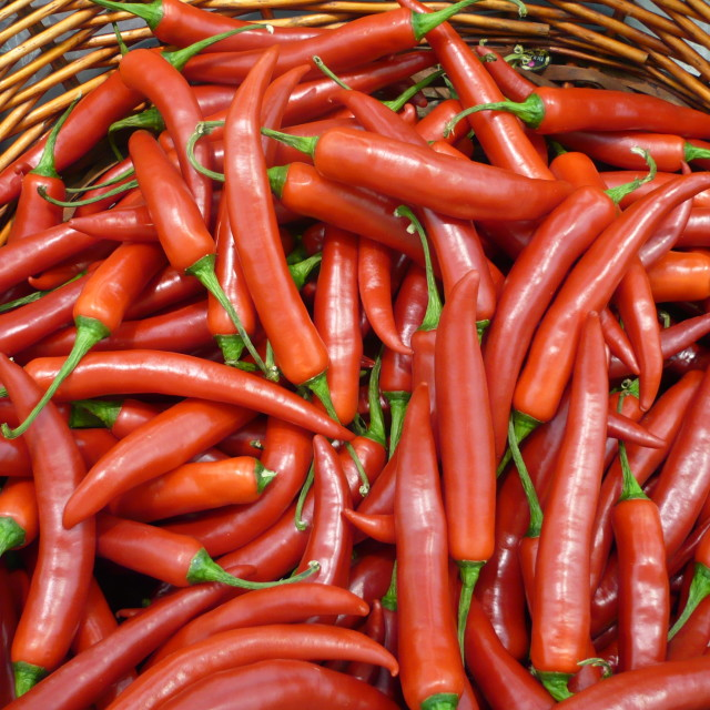 """Fresh Chillies"" stock image"