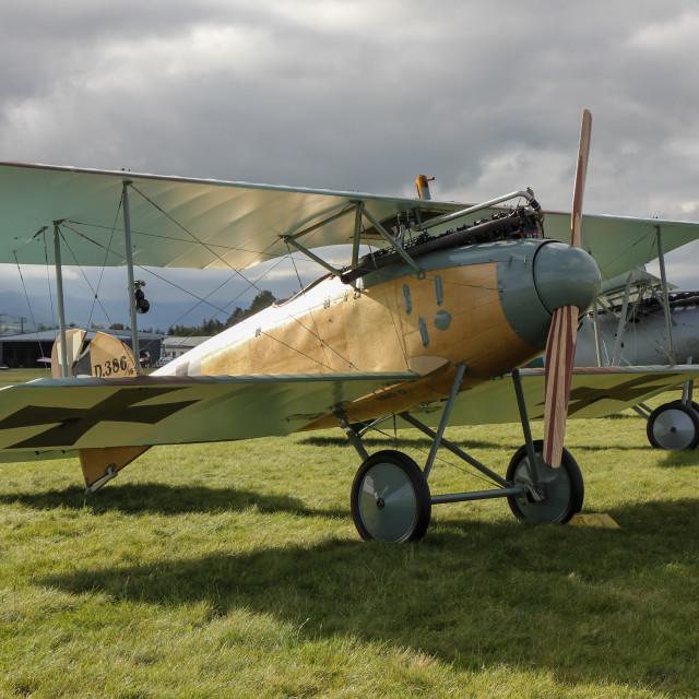 """German Albatros aircraft"" stock image"