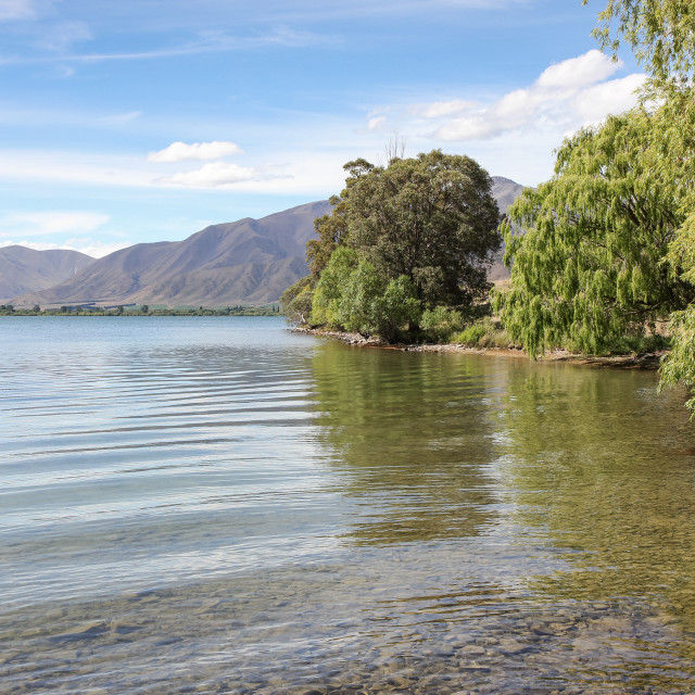 """Lake Benmore shoreline"" stock image"