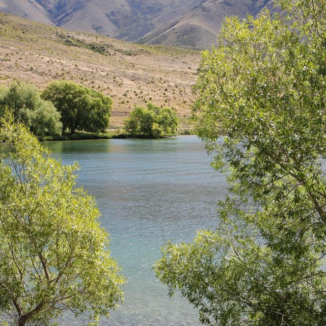 """Lake Benmore in summer"" stock image"