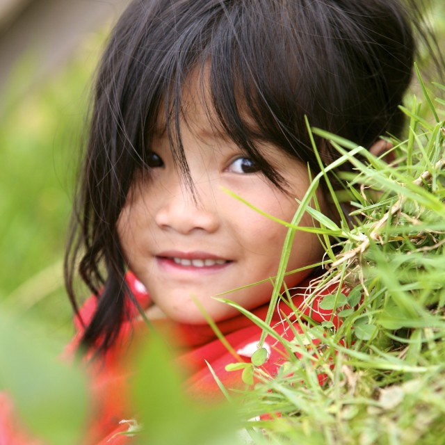 """""""Child in Rice fields of Sapa"""" stock image"""
