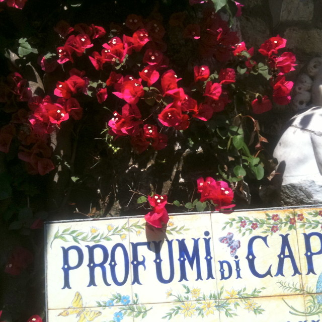 """Profumi di Capri"" stock image"