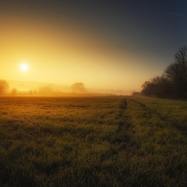 """Morning"" stock image"