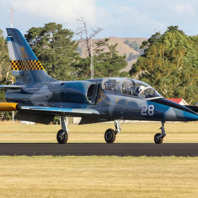 """""""L-39C Albatros"""" stock image"""