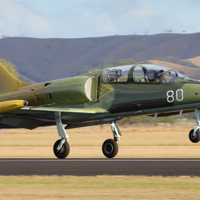 """Albatros jet takes off"" stock image"
