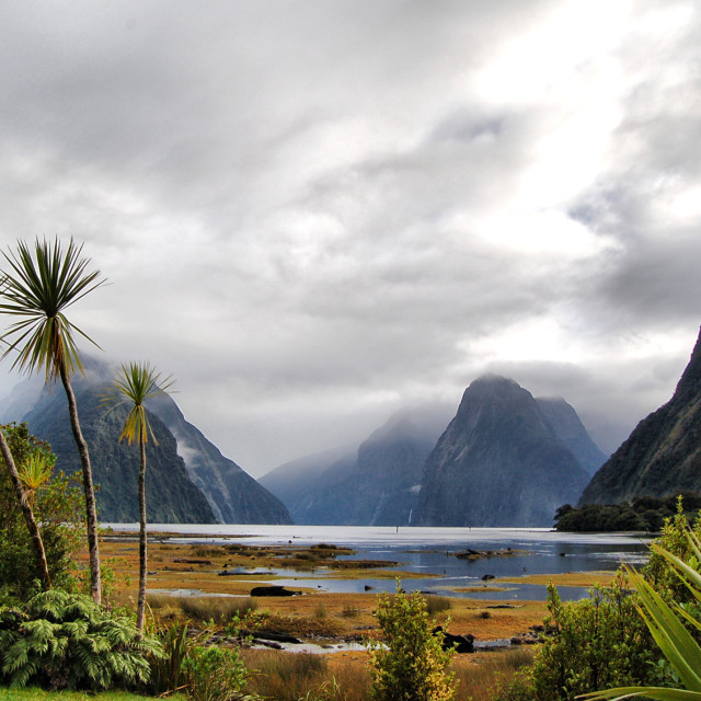 """Milford sounds, New Zealand"" stock image"