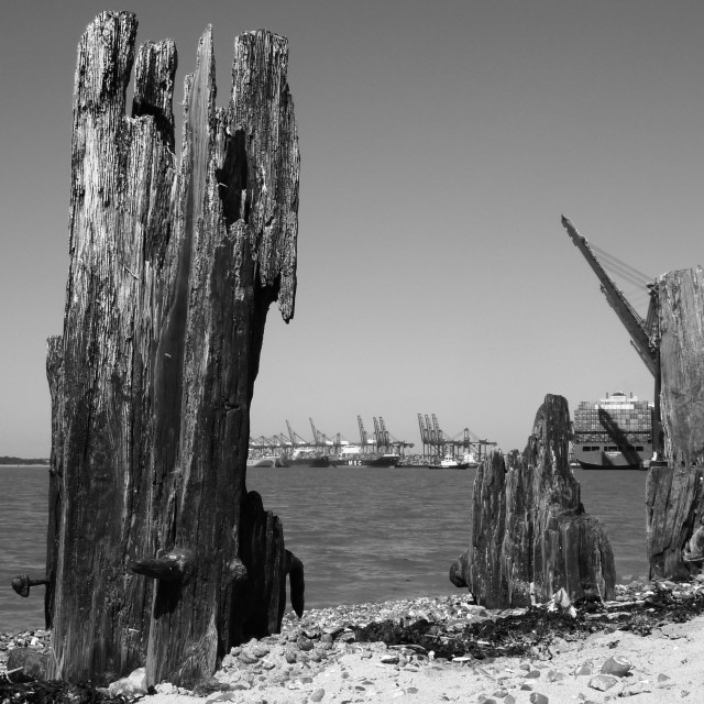 """""""Jetties and Ports"""" stock image"""