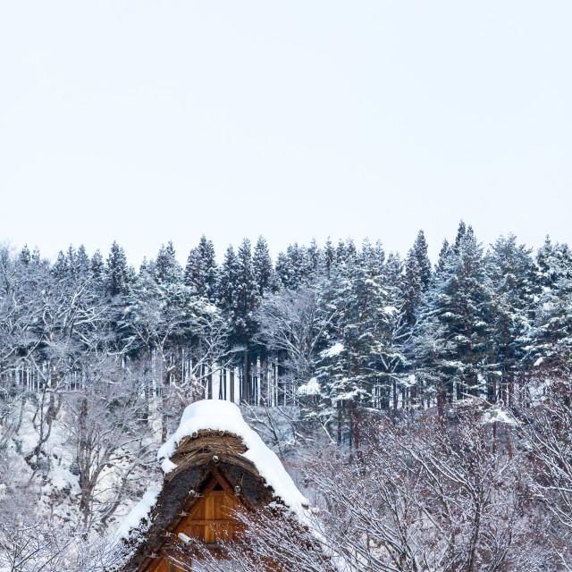 """""""House in Shirakawa"""" stock image"""
