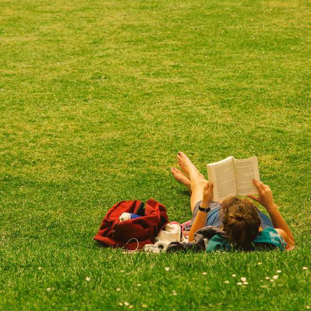 """Reading in the Park"" stock image"