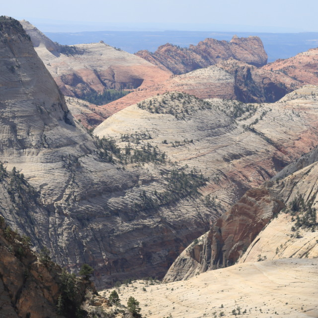 """Desert Landscape, Zion National Park"" stock image"