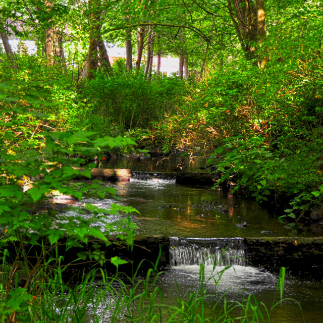 """Upper Des Moines Creek - Late Spring"" stock image"