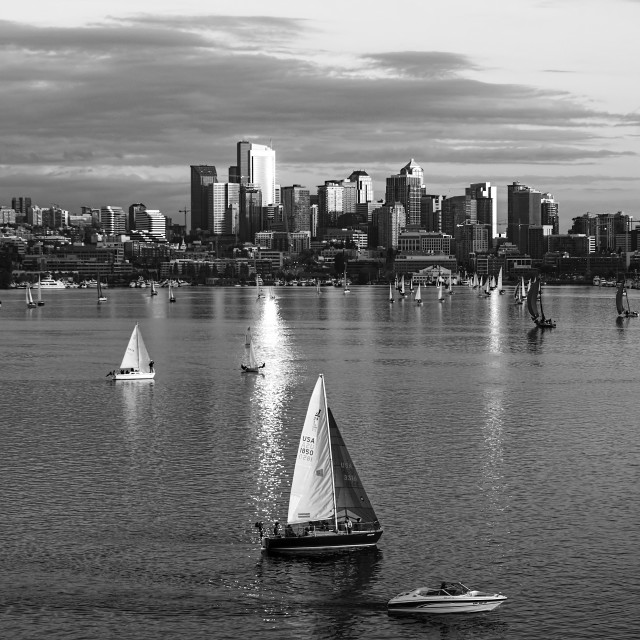 """Spring Evening at Lake Union #1"" stock image"