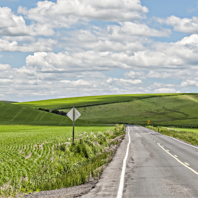 """Road to the Palouse"" stock image"