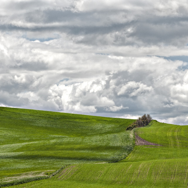 """Clouds over the Palouse"" stock image"