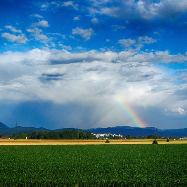 """Rainbow over the field"" stock image"