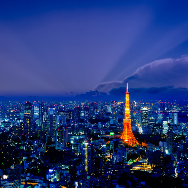 """""""Tokyo tower as seen with skyline"""" stock image"""