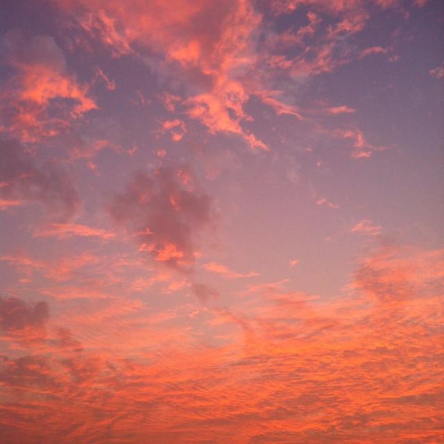 """""""Goa Sunset"""" stock image"""